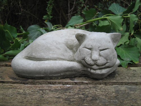 KA41 Sleeping Cat